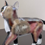 猫好きだけどこれはイヤァァァ! 猫をスケスケの解剖模型にしてしまった教育トイ