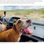 9歳で亡くなった犬の霊が監視カメラに「今でもそばにいる」と飼い主(米)