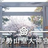 高級ホテル×伊勢山皇大神宮での結婚式プラン「横浜旅するウェディング」を湘南プレミアムWeddingが提供開始