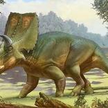 アメリカの牧場で20年前に発見された恐竜の化石はケラトプス科の新種だった