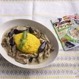 お肉の代替えでヘルシー!「ダイズラボ」シリーズの新商品『大豆のお肉のグリーンカレー』をためしてみよう!