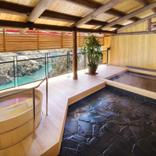 絶景と秘湯に出会う山旅(36)日本百名山の剣山、そして「奥祖谷のかずら橋」と大歩危峡温泉