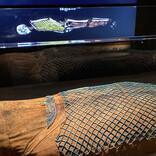 ミイラの匂いを嗅ぎ、CTスキャンを見る! 「大英博物館ミイラ展」が開催