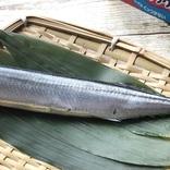 """秋刀魚だってフライパンで手軽に焼きたい!その願いは""""フライパン用ホイル""""で叶うのか、徹底検証してみたところ… マイ定番スタイル"""