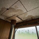 購入したばかりの中古住宅、大雨で天井から雨漏り発生!売主に損害請求できる?