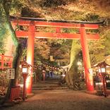 【2021年版】京都「紅葉ライトアップ」穴場のおすすめスポット10選