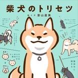 史上初の『柴犬のトリセツ』発売! 絶妙な柴犬あるあるが満載!