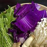 【魔女のスープ爆誕】紫白菜を入れた鍋に悲劇が……! 「ハロウィンにピッタリですね」「こんな色になるとはびっくり(笑)」の声 - 経験者も続々と集まる