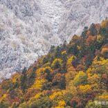 幻想的すぎる「秋と冬の境目」を写した1枚… その美しさにウットリする人続出