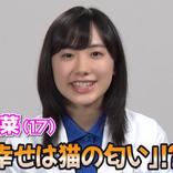 「一番の幸せは猫に匂い」⁉︎ 芦田愛菜(17) 新CM出演 単独インタビュー
