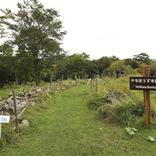 3000平方メートルの湿原を学ぶ「霧多布湿原センター」【北海道浜中町の旅7】