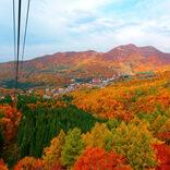 今まさに見頃です♡この秋おすすめ「全国の紅葉スポット」5選