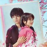 中島健人×松本穂香『桜のような僕の恋人』配信日決定 ティーザー予告解禁